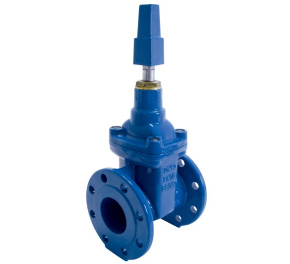 Resilient Seated Gate Valve Series 31 Features And